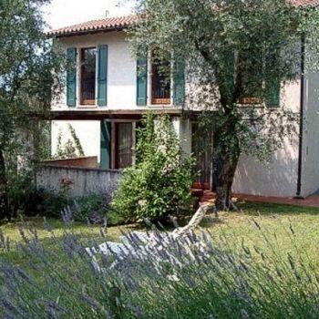 Ferienwohnung Gardasee mit Hund im Olivenhain