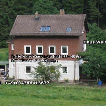 Ferienwohnung im Harz gerne mit Hund ab 35Euro p.N.