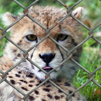 Ausflug Zoo Landau