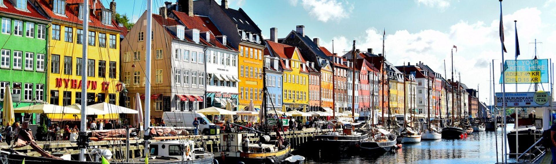 Ferien Dänemark Urlaub mit Hund