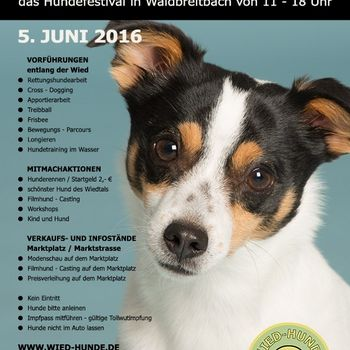 Wied Hunde Festival Waldbreitbach