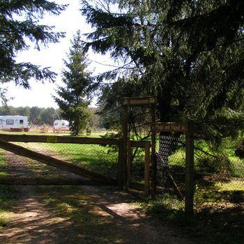 Forsthaus Metzelthin – Ferien mit dem Hund + Hundeschule im Urlaub