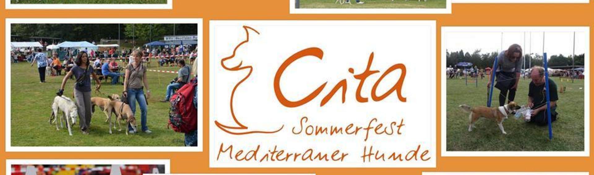 Cita – Sommerfest mediterraner Hunde 2020