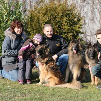 Hundeschule Berlin Kaiser