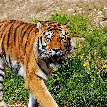 Tierpark Hellabrunn – Geo Zoo