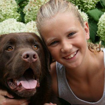 Camping Holland mit Hund Het Winkel