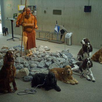Neanderthal Museum Hund