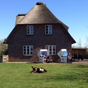 Reetgedecktes Ferienhaus auf Föhr mit eingezäuntem Garten