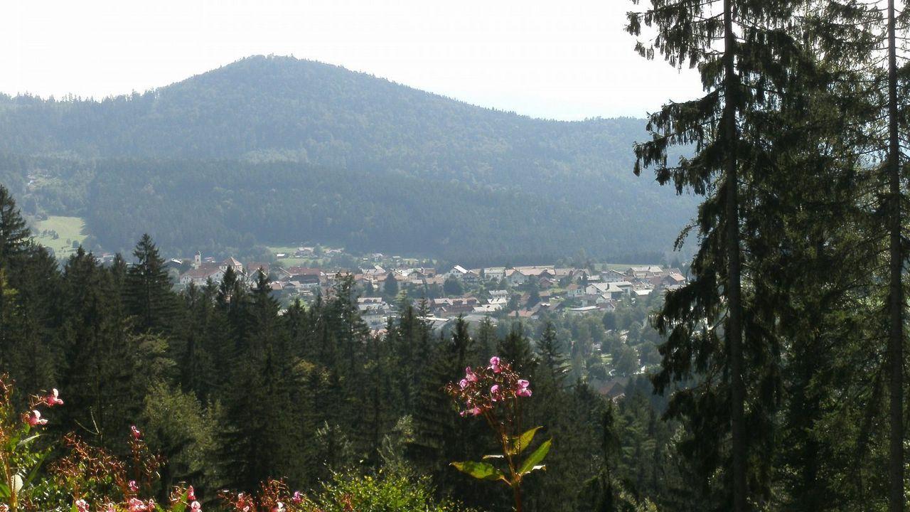 Gemütliche Ferienwohnungen Bayerischer Wald