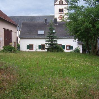 Urlaub mit Hund in der Eifel – Rheinlandpfalz